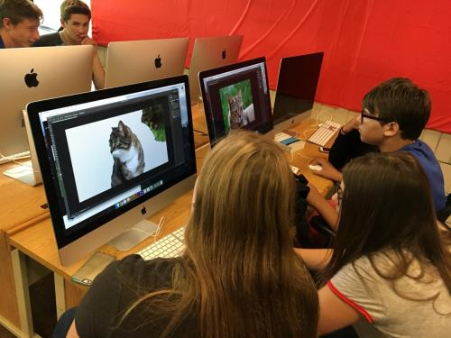 During the staff retreats, the top editors plan competitions that teach skills. Here, at the computer pod, a group of journalists practices cutouts in Photoshop using Flickr CC photos of cats.